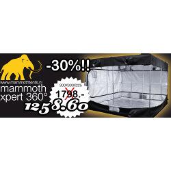 Mammoth Xpert 360º 300