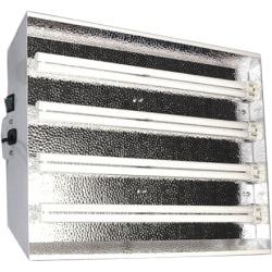 CFL Starlight (4x55)