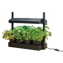 Garland Grow Light Garden Black Micro