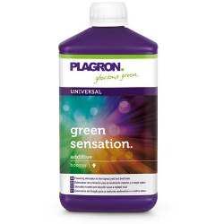 Plagron Green Sensation (1 Liter)